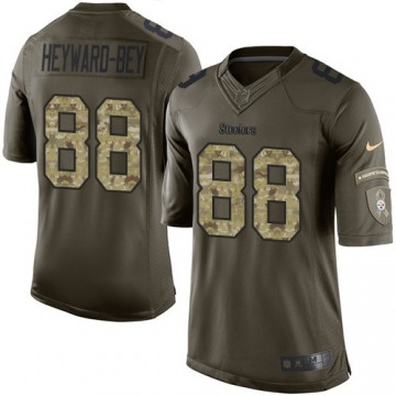 Youth Darrius Heyward-Bey Pittsburgh Steelers Nike Limited Salute to Service Jersey - Green